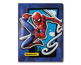 תיק אינדקס 20 כיס SPIDERMAN